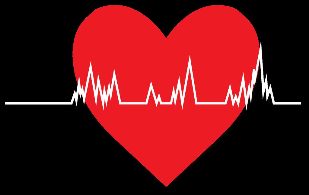 בעיות לב המכון הרפואי לבטיחות בדרכים