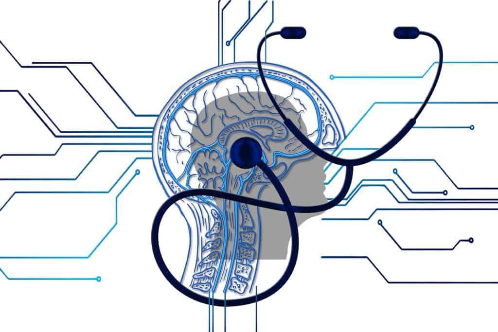 אפילפסיה במכון הרפואי לבטיחות בדרכים
